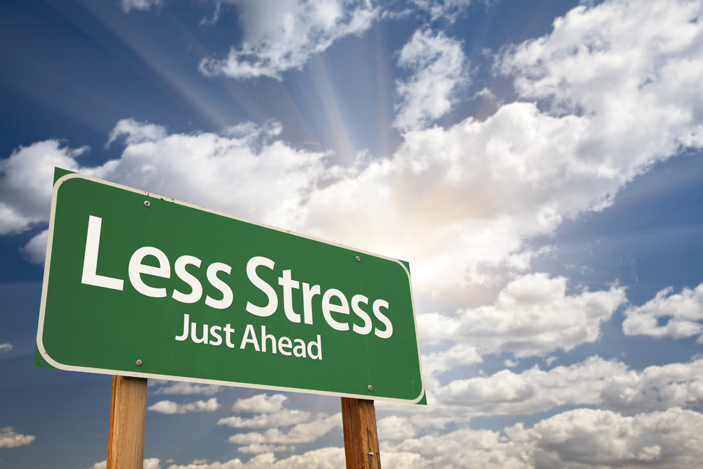 Less Stress More Success Leaving Cert Revision Guide Review