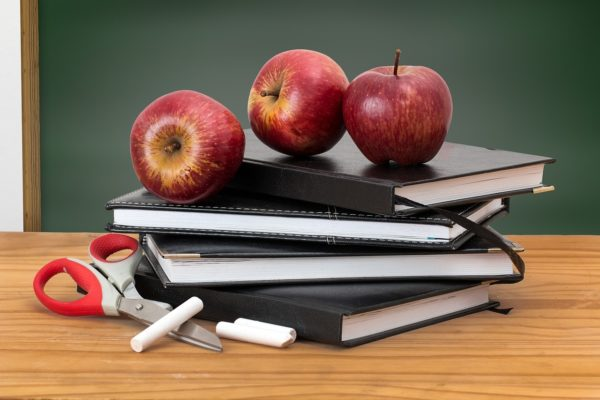 Career Profile: Working in Primary Teaching