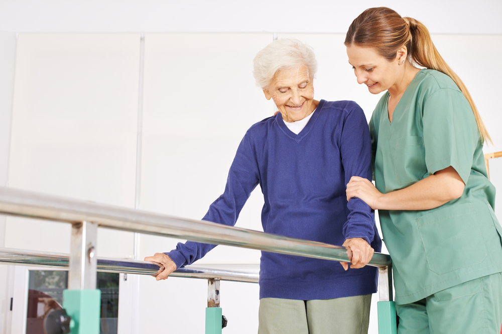 Career Profile – Physiotherapist