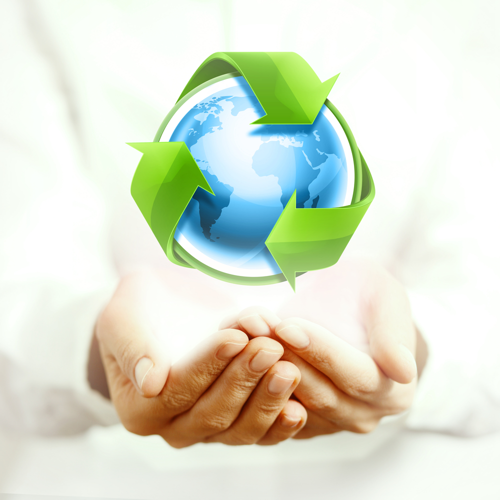 Environmental Society