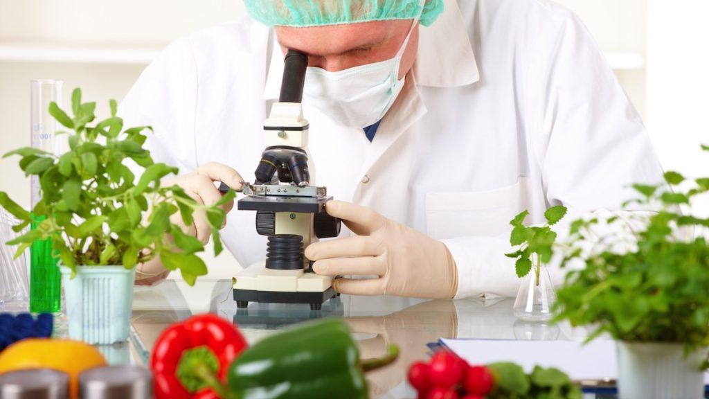 Food Science and Food Technology