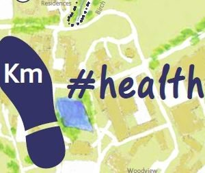 Healthy UCD Walks