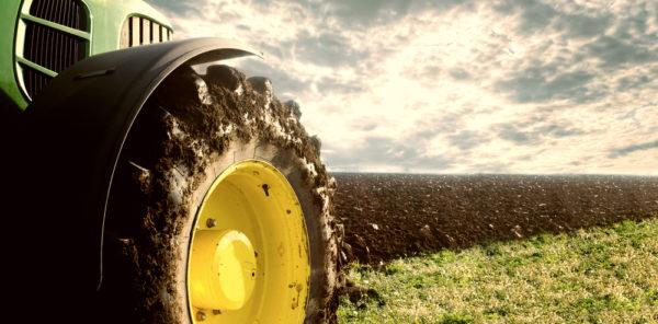 UCC Launches Social Farming Course