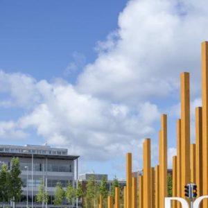Survey Reveals Key Considerations for Prospective DCU Students